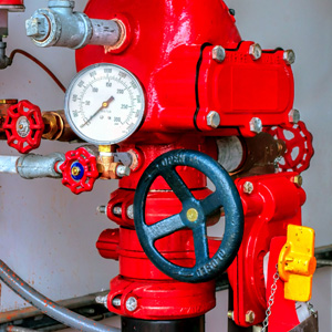 Wet and dry riser pressure gauge and valve